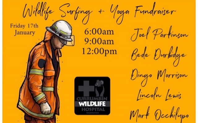 SURFING SERVICES WILDLIFE FUNDRAISER